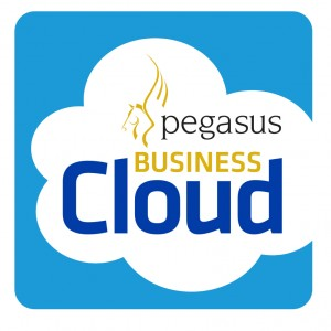 Pegasus Business Cloud