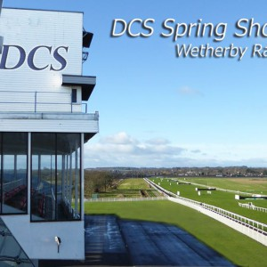 DCS Spring free business and accounting event