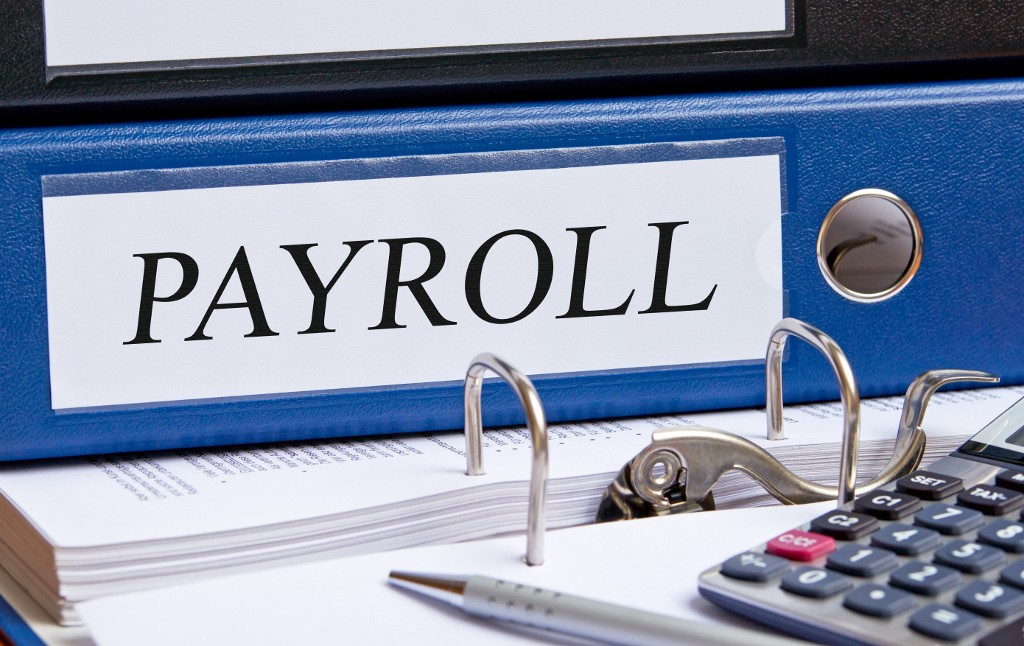 Opera 3 payroll training and support