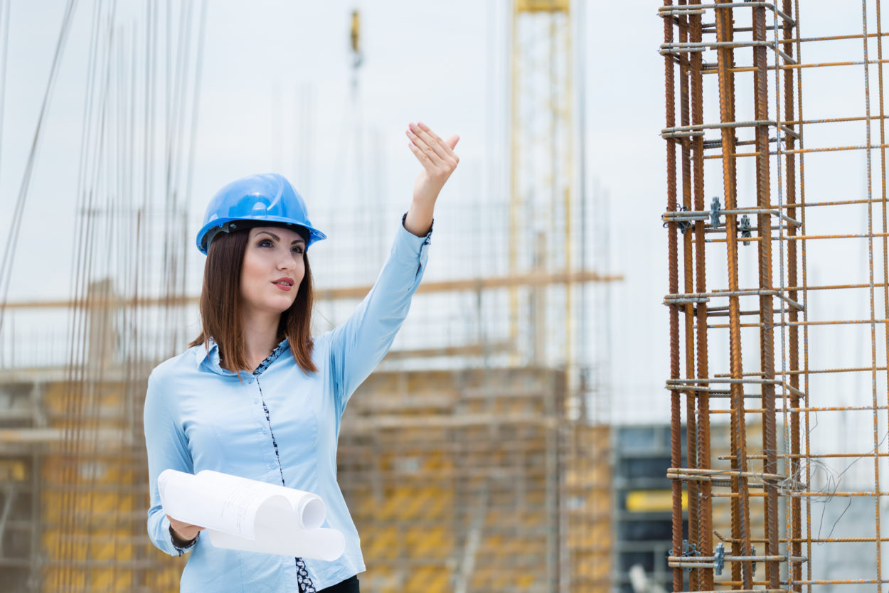 Construction industry software for managing directors