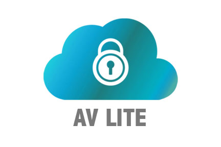 Cloud backup, Amber vault Lite