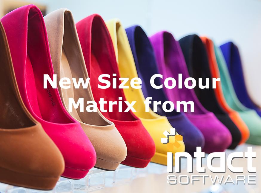 size & colour matrix accounts erp